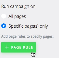 Add Page Rule
